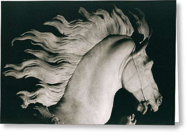 Champs Photographs Greeting Cards - Horse of Marly Greeting Card by Coustou