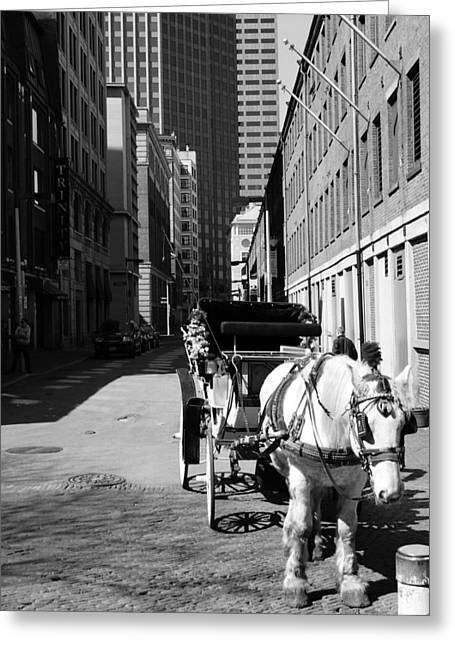 Horse And Buggy Greeting Cards - Horse Rides Greeting Card by Ben Brown