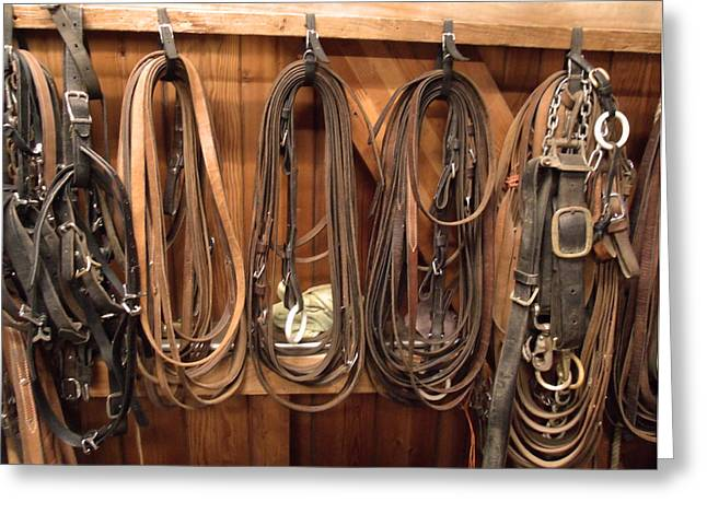 Warm Tones Greeting Cards - Horse Tack and Reins Greeting Card by Kym Backland