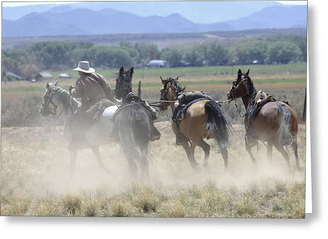 Posse Greeting Cards - Horse Thief Greeting Card by Jerry McElroy