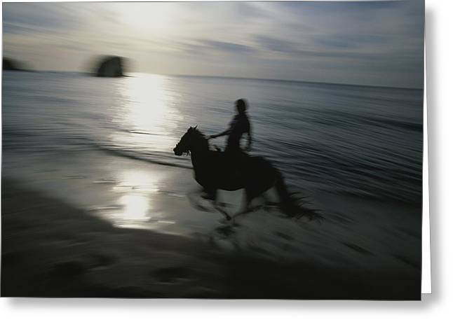 Beach Model Greeting Cards - Horseback Rider Silhouetted On Beach Greeting Card by Michael Melford