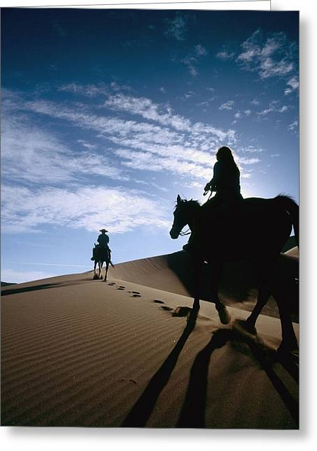 Silhouettes Of Horses Greeting Cards - Horseback Riders In Silhouette On Sand Greeting Card by Axiom Photographic