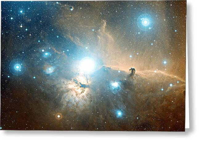 Orionis Greeting Cards - Horsehead And Flame Nebulae Greeting Card by Davide De Martin