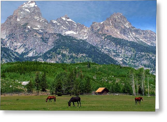 Barn Landscape Photographs Greeting Cards - Horses Grazing Near the Tetons Greeting Card by Ken Smith