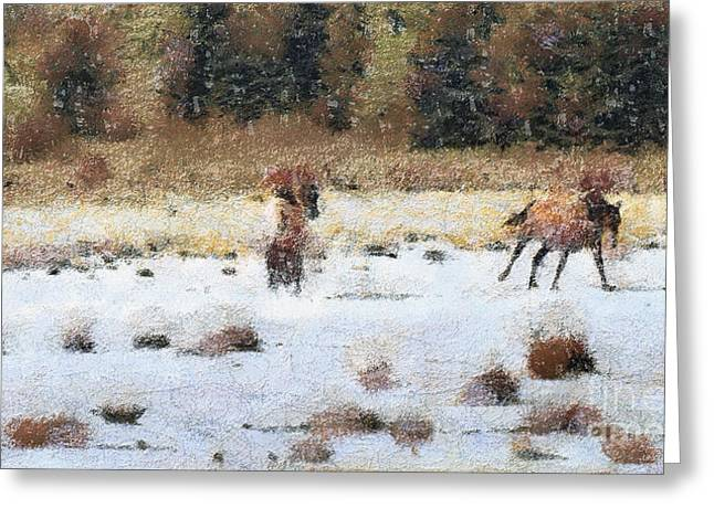 Odon Greeting Cards - Horses running Greeting Card by Odon Czintos