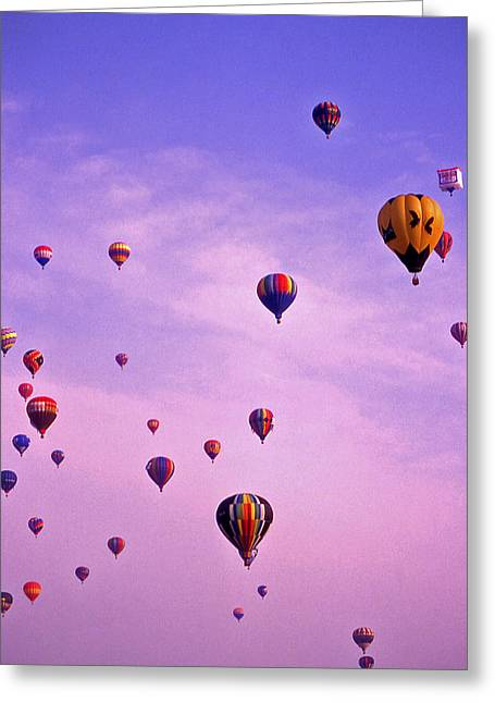 Warner Park Greeting Cards - Hot Air Balloon Race - 1 Greeting Card by Randy Muir