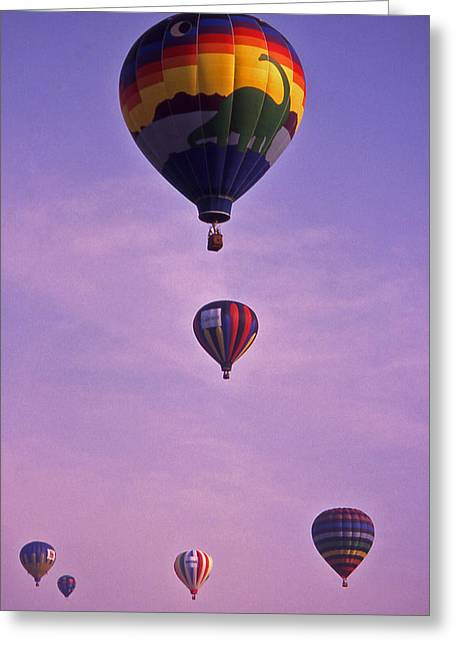 Warner Park Greeting Cards - Hot Air Balloon Race - 3 Greeting Card by Randy Muir