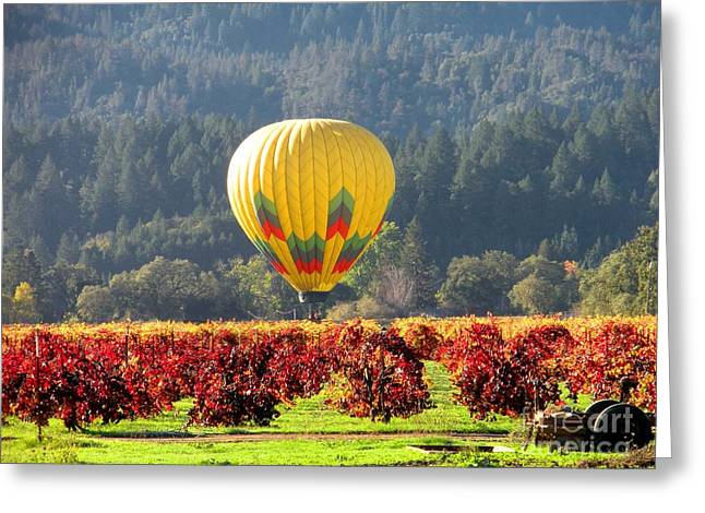 Calistoga Greeting Cards - Hot Air in the Valley Greeting Card by Gail Salituri