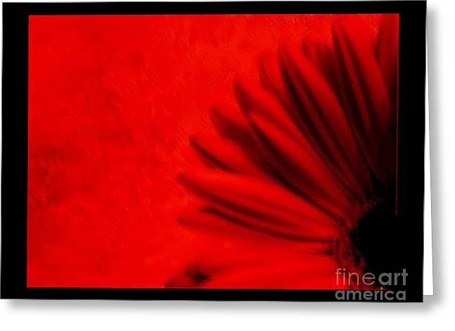 Hot Red Gerber Daisy Greeting Card by Marsha Heiken