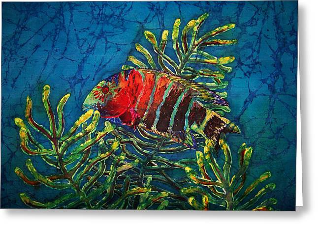 Fish Tapestries - Textiles Greeting Cards - Hovering - Red Banded Wrasse Greeting Card by Sue Duda