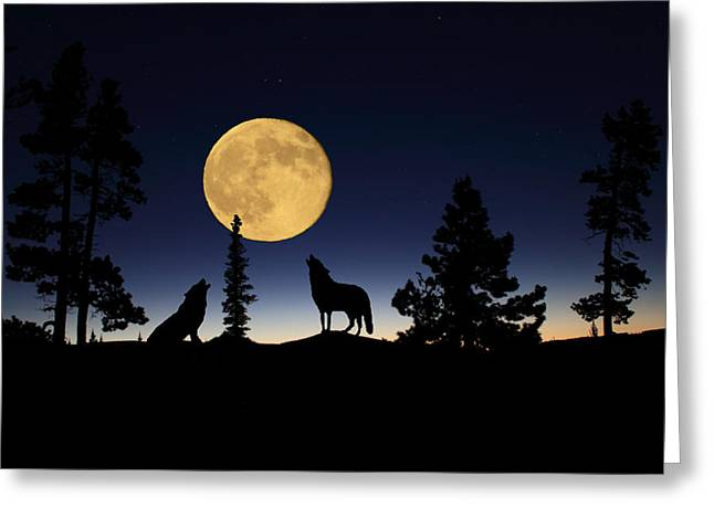 Full Moon Mixed Media Greeting Cards - Howling at the Moon Greeting Card by Shane Bechler