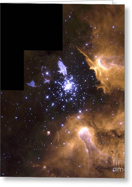 Starbirth Greeting Cards - Hst Image Of A Starbirth Region Greeting Card by Space Telescope Science Institute / NASA