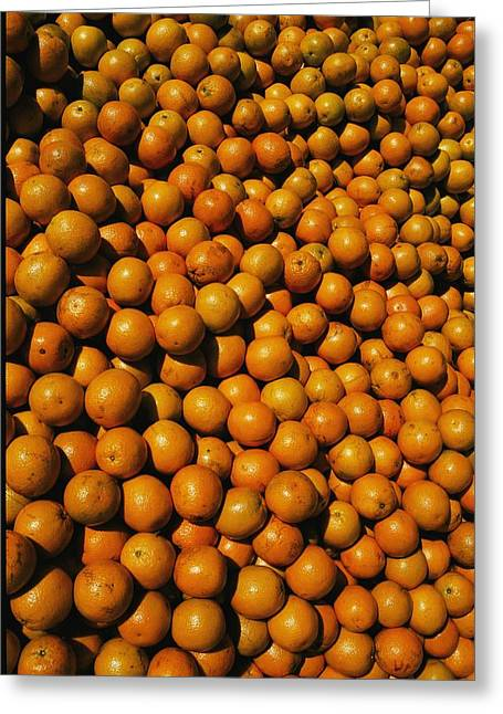Ocala Greeting Cards - Huge Crates Of Sun-ripened Oranges Greeting Card by Stephen St. John