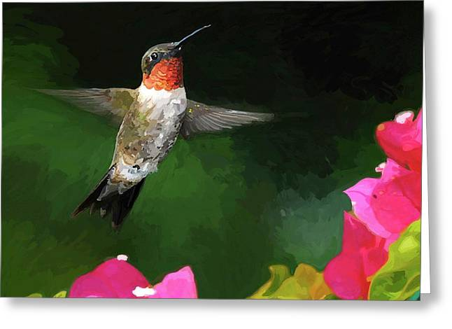 Ruby Throated Hummingbird Greeting Cards - Hum a Song Greeting Card by Patti Siehien