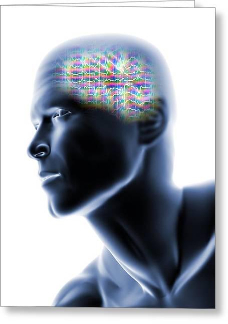 Eeg Greeting Cards - Human Head With Eeg Brainwaves Greeting Card by Pasieka