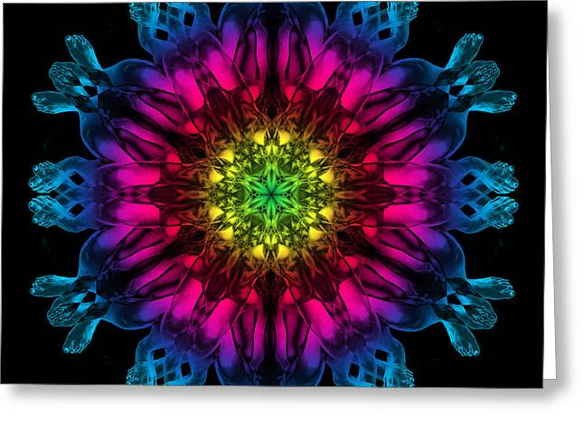 HuMandala 3 Greeting Card by David Kleinsasser