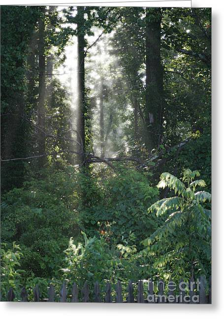 Humid Greeting Card by Cris Hayes