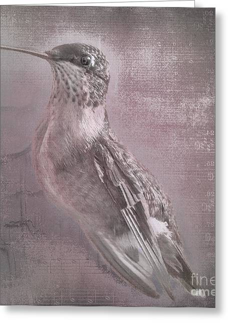 Cris Hayes Greeting Cards - Hummer Portrait Greeting Card by Cris Hayes