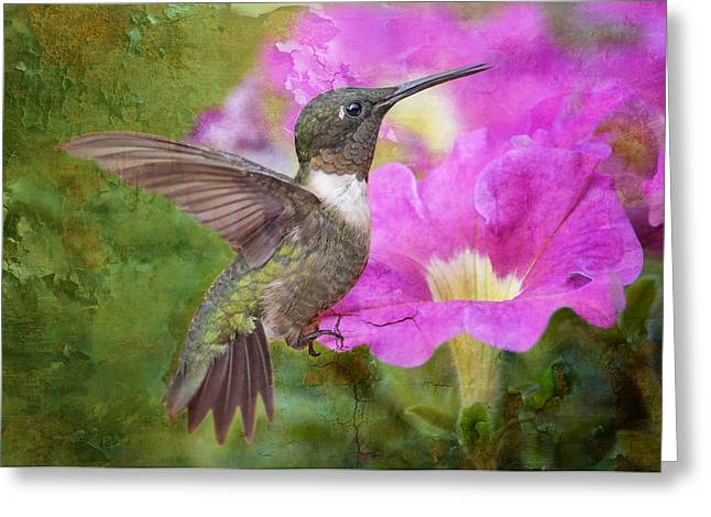 Ruby Throated Hummingbird Greeting Cards - Hummingbird and Petunias Greeting Card by Bonnie Barry