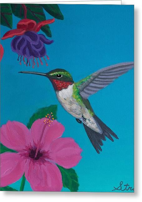 Ruby Throated Hummingbird Greeting Cards - Hummingbird Heaven Greeting Card by Frank Strasser