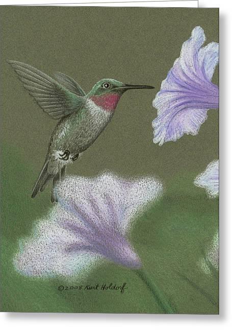 Holdorf Greeting Cards - Hummingbird Greeting Card by Kurt Holdorf