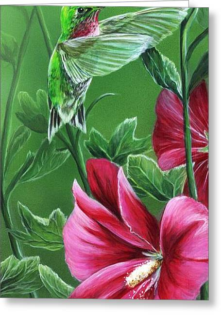 Hummingbird Greeting Card by Sharon Molinaro