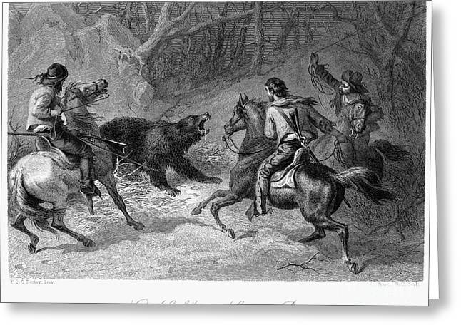 1874 Greeting Cards - Hunting: Bear, 1874 Greeting Card by Granger
