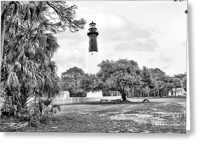 Coastal Trees Greeting Cards - Hunting Island Lighthouse Greeting Card by Scott Hansen
