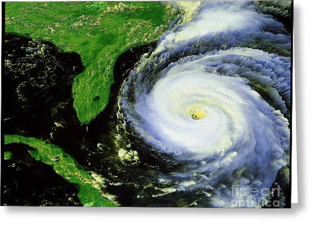 Noaa Greeting Cards - Hurricane Fran Greeting Card by NASA / Science Source