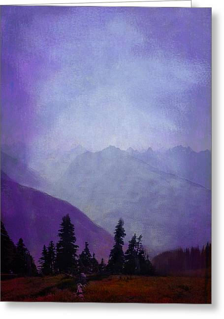 Olympic Mountains Greeting Cards - Hurricane Ridge - Olympics Greeting Card by Jeff Burgess
