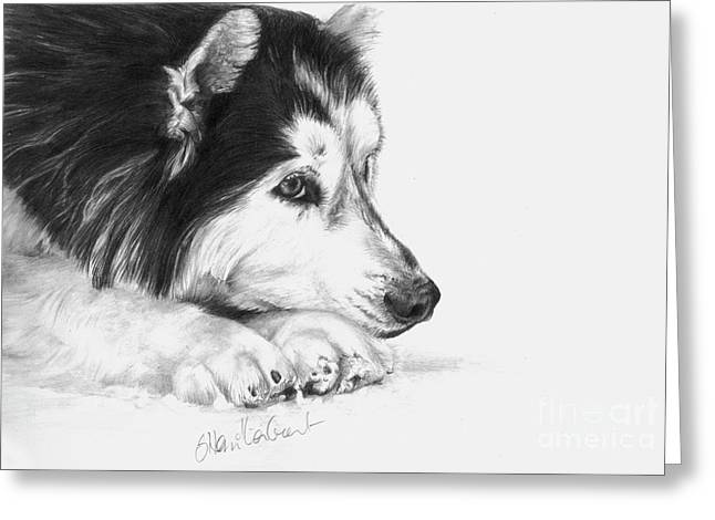 Husky Drawings Greeting Cards - Husky Contemplation Greeting Card by Sheona Hamilton-Grant