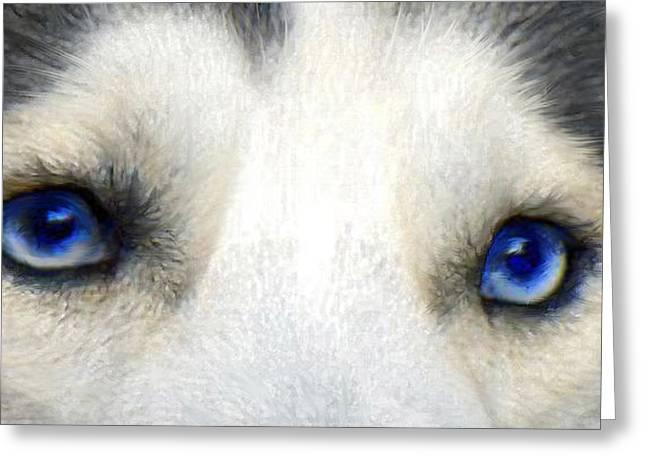 Husky Digital Art Greeting Cards - Husky Eyes Greeting Card by Jane Schnetlage