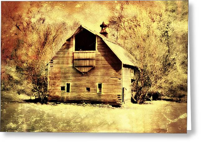 Hwy 20 Barn Greeting Card by Julie Hamilton