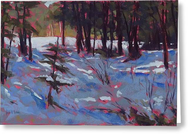 Snowscape Pastels Greeting Cards - Hyak Shade Greeting Card by Mary McInnis