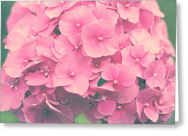 Belles Pyrography Greeting Cards - Hydrangea Greeting Card by Paula Belle Flores