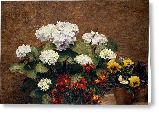 Tasteful Greeting Cards - Hydrangeas and Wallflowers and Two Pots of Pansies Greeting Card by Henri Jean Fantin-Latour