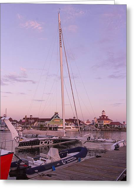 Sailboat Ocean Greeting Cards - Hydroptere Greeting Card by Heidi Smith
