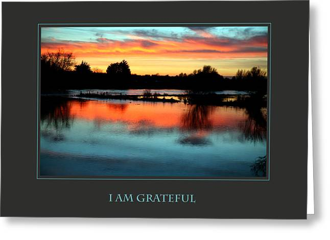 Affirmation Greeting Cards - I Am Grateful Greeting Card by Donna Corless