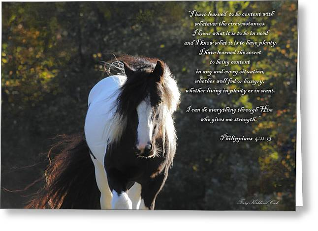 Gypsy Vanner Horse Greeting Cards - I Can Do All Things Greeting Card by Terry Kirkland Cook