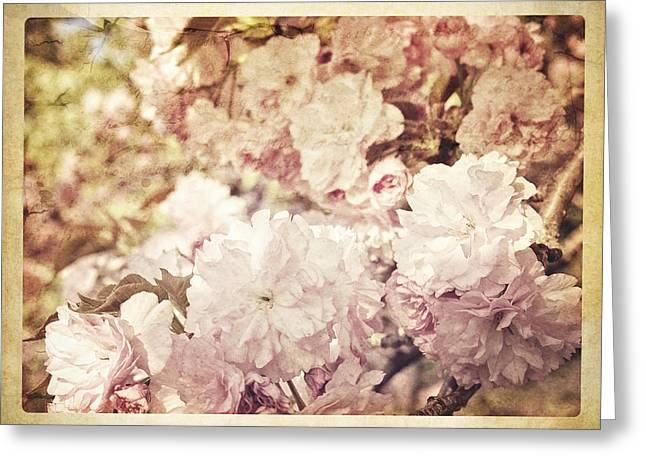 Pink Flower Prints Greeting Cards - I Can Smell Springtime Greeting Card by Kathy Jennings