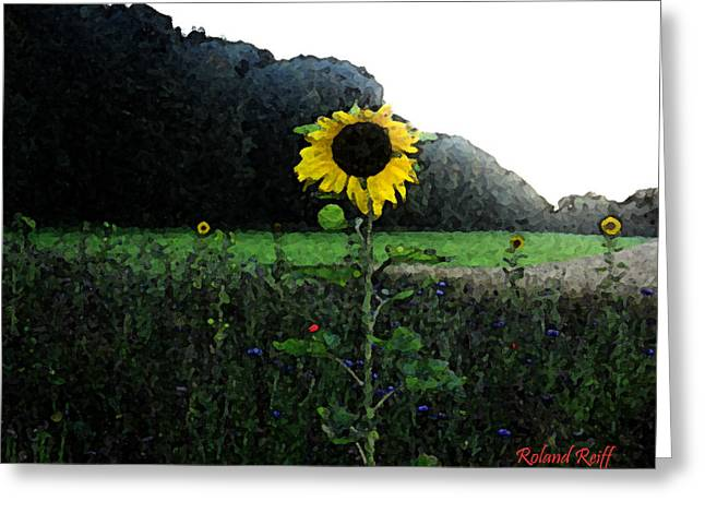 Creativ Greeting Cards - I Love Sun Greeting Card by Roland Reiff