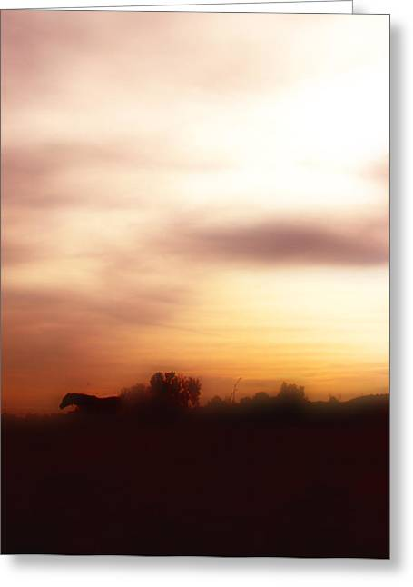 Horse Art Pastels Greeting Cards - I once had a dream ... Greeting Card by El Luwanaya Arabians