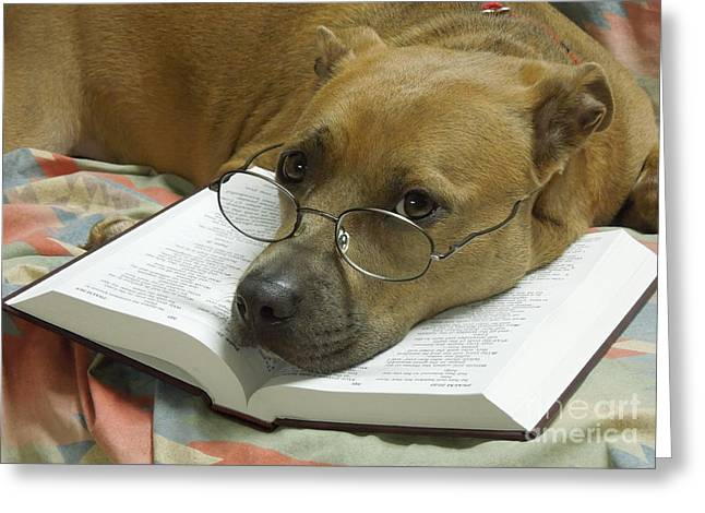 Apbt Greeting Cards - I Read My Bible Every Day Greeting Card by Renee Trenholm