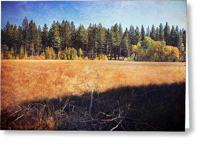 Fall Colors Digital Greeting Cards - I Roam Greeting Card by Laurie Search