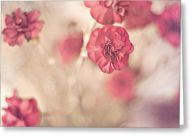 Textured Floral Greeting Cards - I Still Believe Greeting Card by Joel Olives