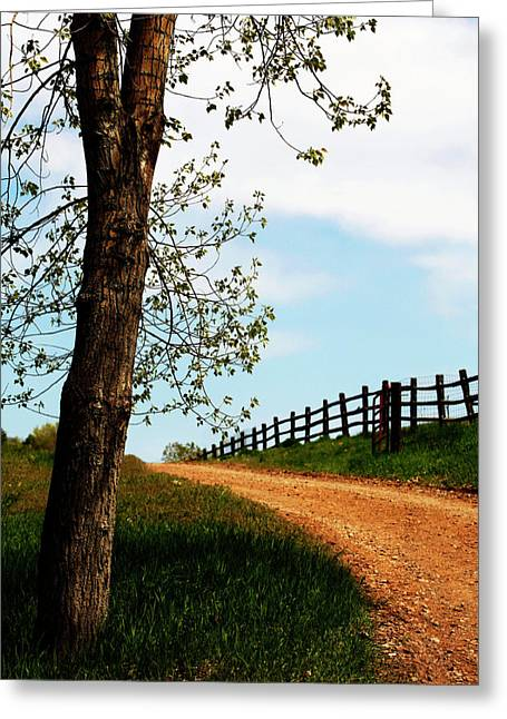 Gravel Road Greeting Cards - I Walk the Gravel Road Greeting Card by Marilyn Hunt