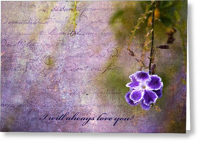I Will Always Love You Greeting Cards - I will always love you Greeting Card by Bonnie Barry