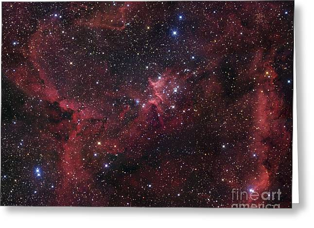Heart Nebula Greeting Cards - Ic 1805 In Cassiopeia Greeting Card by Robert Gendler