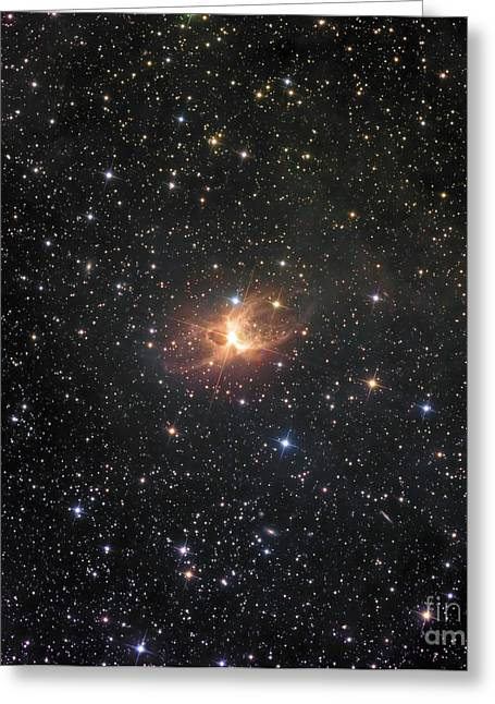 Toby Greeting Cards - Ic 2220, Known As The Toby Jug Nebula Greeting Card by Don Goldman