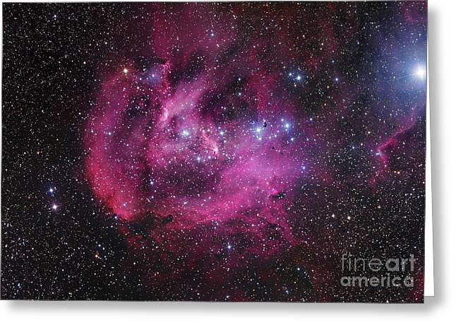 Ic 2944, The Running Chicken Nebula Greeting Card by Robert Gendler